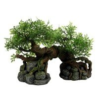Terra Della Jungle Tree