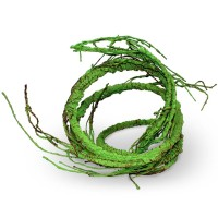 Pangea Ultimate Reptile Vine with branches green